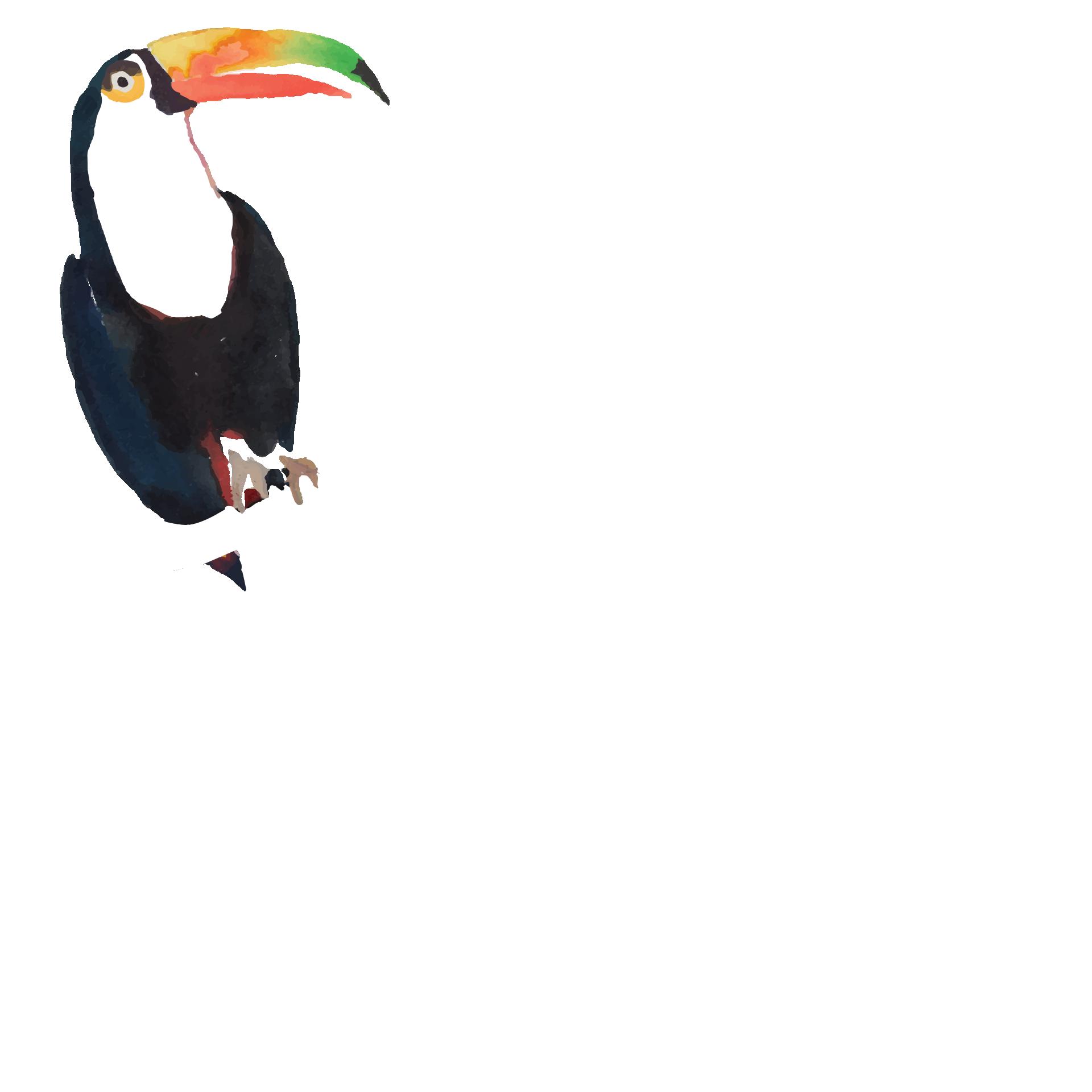Welcome to El Tucán Miami   Nightclub